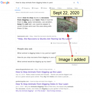featured snippet with image